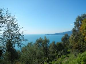 ligurian-coast1