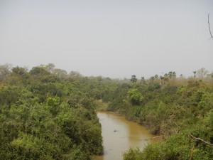 gambia-river-1