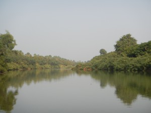 gambia-river2